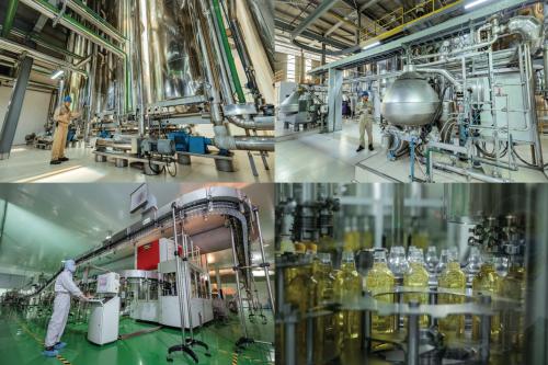 Tập đoàn Wilmar tại Việt Nam đãđầu tư công nghệ hiện đại, quy trình nghiêm ngặt để sản xuất dầu gạo nguyên chất Simply.