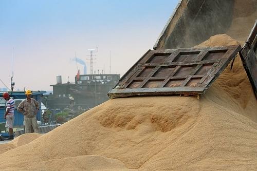 Đậu tương nhập khẩu tại một cảng ở Giang Tô (Trung Quốc). Ảnh: Reuters