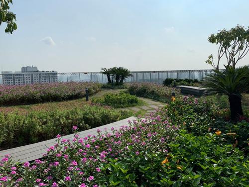 Khu vực nghỉ chân được đặt tại độ cao hơn 80 m so với mặt đất, xung quanh ngập tràn cây cỏ và sắc hoa. Vườn chân mây tại Imperia Sky Garden đã hoàn thành với những băng ghế dài nằm giữa vườn hoa tím biếc.