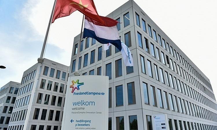 Hành trình Cô Gái Hà Lan vào top 5 tập đoàn sữa lớn nhất thế giới
