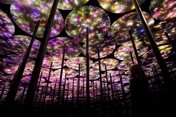 Ngoài thế giới đại dương, chủ đầu tư Sunshine Group còn bố trí khu rừng ánh sáng 3D, ứng dụng công nghệ trình chiếu hiện đại.