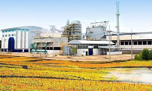 Một nhà máy của Absolute Clean Energy tạiPrasat, Surin,Thái Lan. Ảnh: ACE website.