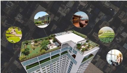 Hệ thống xanh tại tầng mái của toà nhà TNG Village