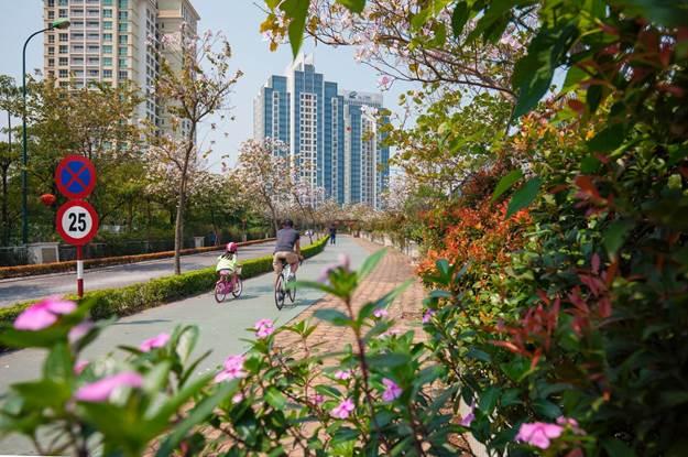 Chặng đường 25 năm phát triển khu đô thị xanh Ciputra Hanoi - 2