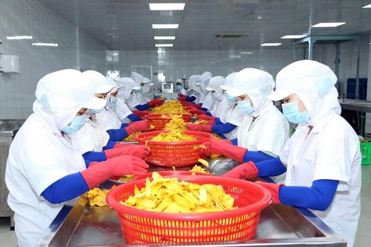 Lương Gia áp dụng dây chuyền sản xuất chú trọng chất lượng, vệ sinh thực phẩm.