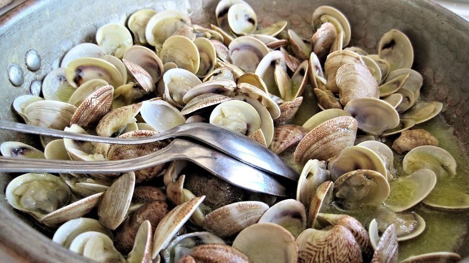 Nghêu, sò Việt Nam được chuộng tại châu Âu