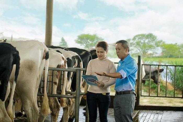 Với hơn 145 năm kinh nghiệm trong chăn nuôi và chế biến sữa, Cô Gái Hà Lan đã, đang và sẽ tiếp tục đồng hành cùng hàng nghìn hộ nông dân chăn nuôi bò sữa tại Lâm Đồng, Long An, Tiền Giang, Tây Ninh, Bình Dương, Củ Chi, Sóc Trăng, Hà Nam, Vĩnh Phúc... tạo ra dòng sữa tươi, sạch theo quy chuẩn Hà Lan, cung cấp dinh dưỡng cho hàng triệu người tiêu dùng Việt Nam.