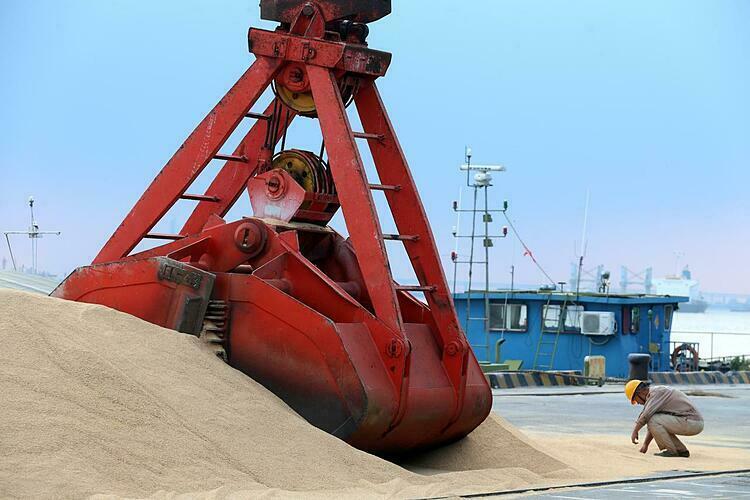 Đậu tương nhập khẩu tại một cảng biển ở Giang Tô (Trung Quốc). Ảnh:Reuters
