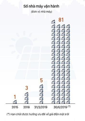 Số lượng nhà máy điện mặt trời được vận hành tăng lên nhanh chóng trong 3 tháng đầu năm 2019.