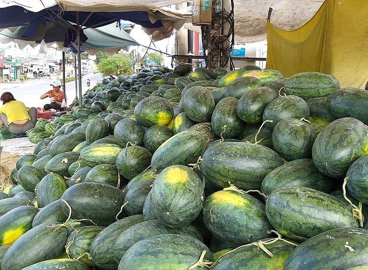 Dưa hấu đổ đống và bán lẻvới giá 4.000 -5.000 đồng một kg tại Kon Tum. Ảnh: Hồng Châu.