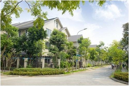 Khuôn viên nhiều cây xanh tại một khu vực trong dự án Sunny Garden City.