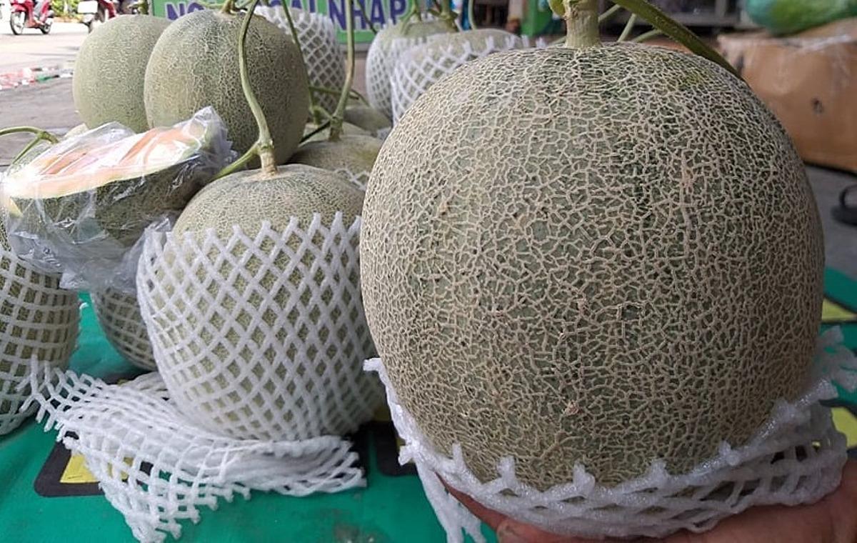 Dưa lưới được bọc túi xốp kỹ càng giá chỉ 25.000 đồng một kg trên đường Lê Đức Thọ. Ảnh: Hồng Châu.