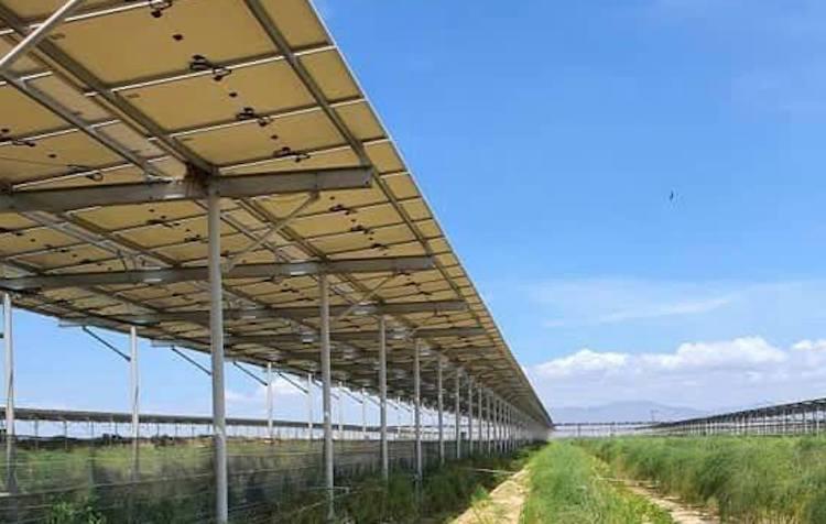 Hệ thống điện mặt trời được lắp đặt tại một trang trại nông nghiệp ở Ninh Thuận. Ảnh: Bằng Lương