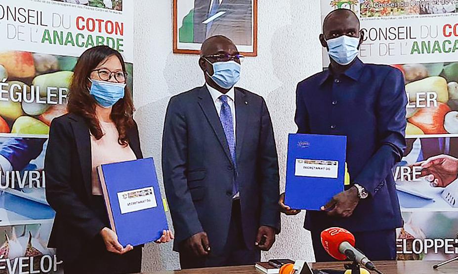 Bà Phạm Thị Phương Mai, đại diện Tập đoàn T&T Group và đại diện Liên minh các nhà xuất khẩu điều Bờ Biển Ngà ký kết hợp đồng thu mua 150.000 tấn điều thô, dưới sự chứng kiến của Hội đồng Bông và Điều Bờ Biển Ngà (giữa).