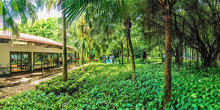 Không gian xanh, trong lành là đặc trưng riêng có của Ecopark mà ít dự án có được. Đó là lý do nhiều khách hàng đến từ Hà Nội chấp nhận di chuyển xa để có môi trường sống tốt hơn, chủ đầu tư cho hay.