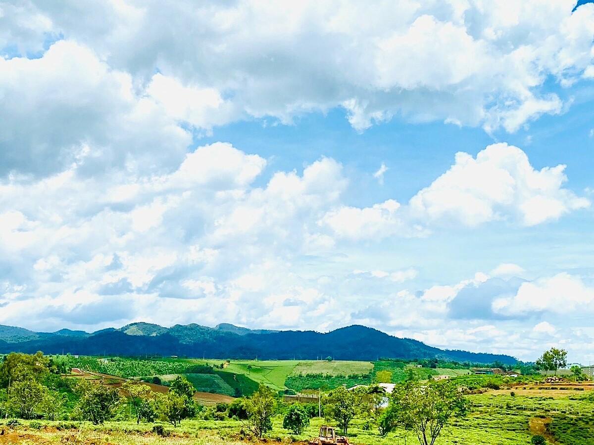 Thiên nhiên Bảo Lộc.