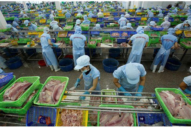 Công nhân trong nhà máy chế biến hải sản ở Cần Thơ. Ảnh: Reuters.