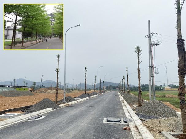 Hệ thống hạ tầng của dự án cơ bản đã hoàn thiện. Ảnh: PV