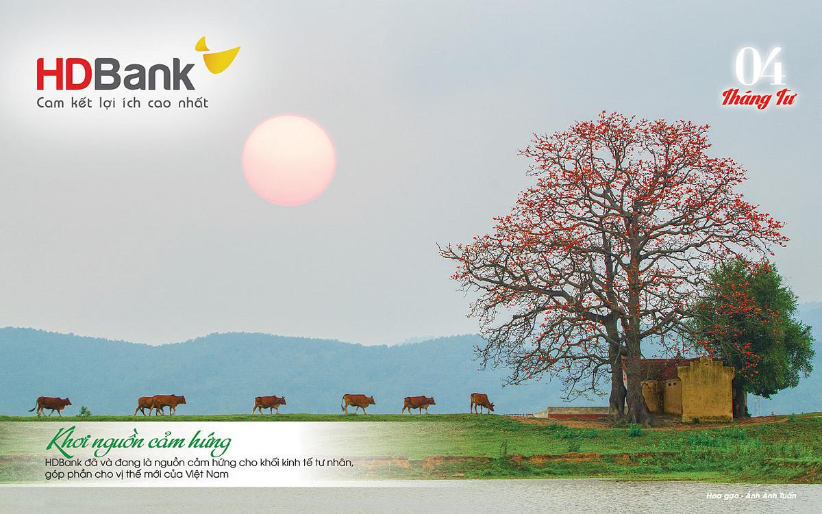 Cảnh sắc quê hương cùng những sắc hoa thắm màu trong bộ lịch HDBank.