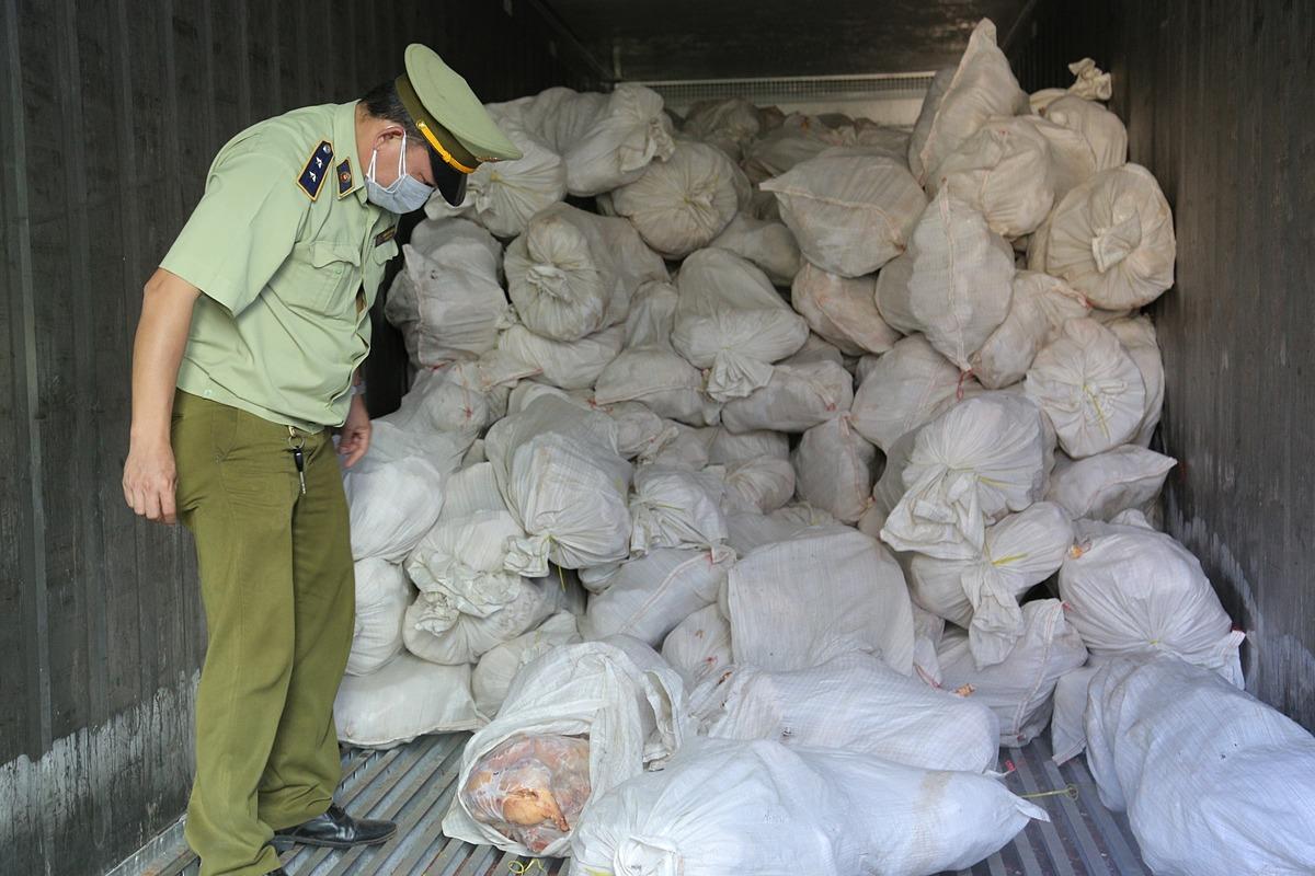 Gần 2 tấn thịt gia cầm đã bốc mùi được phát hiện trên xe tải của ông Kiên. Ảnh: Tổng cục QLTT.