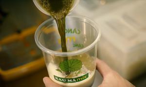 Gojek vinh danh thương hiệu thức uống Việt