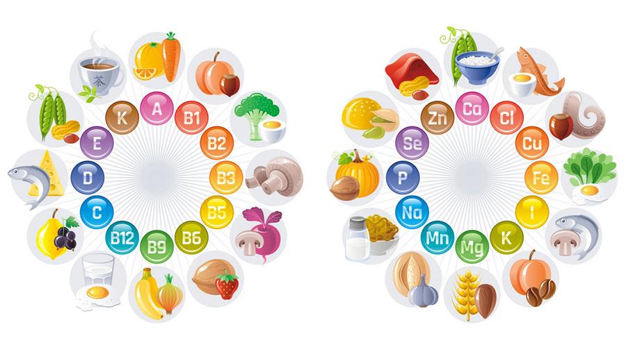Các loại vitamin và khoáng chất có trong thức ăn rất cần thiết cho cơ thể.
