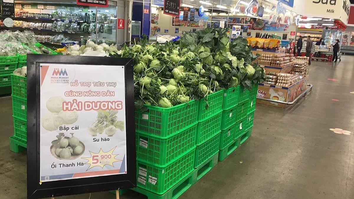 Rau củ từ Hải Dương bắt đầu được bày bán tại chuỗi siêu thị ở Hà Nội.