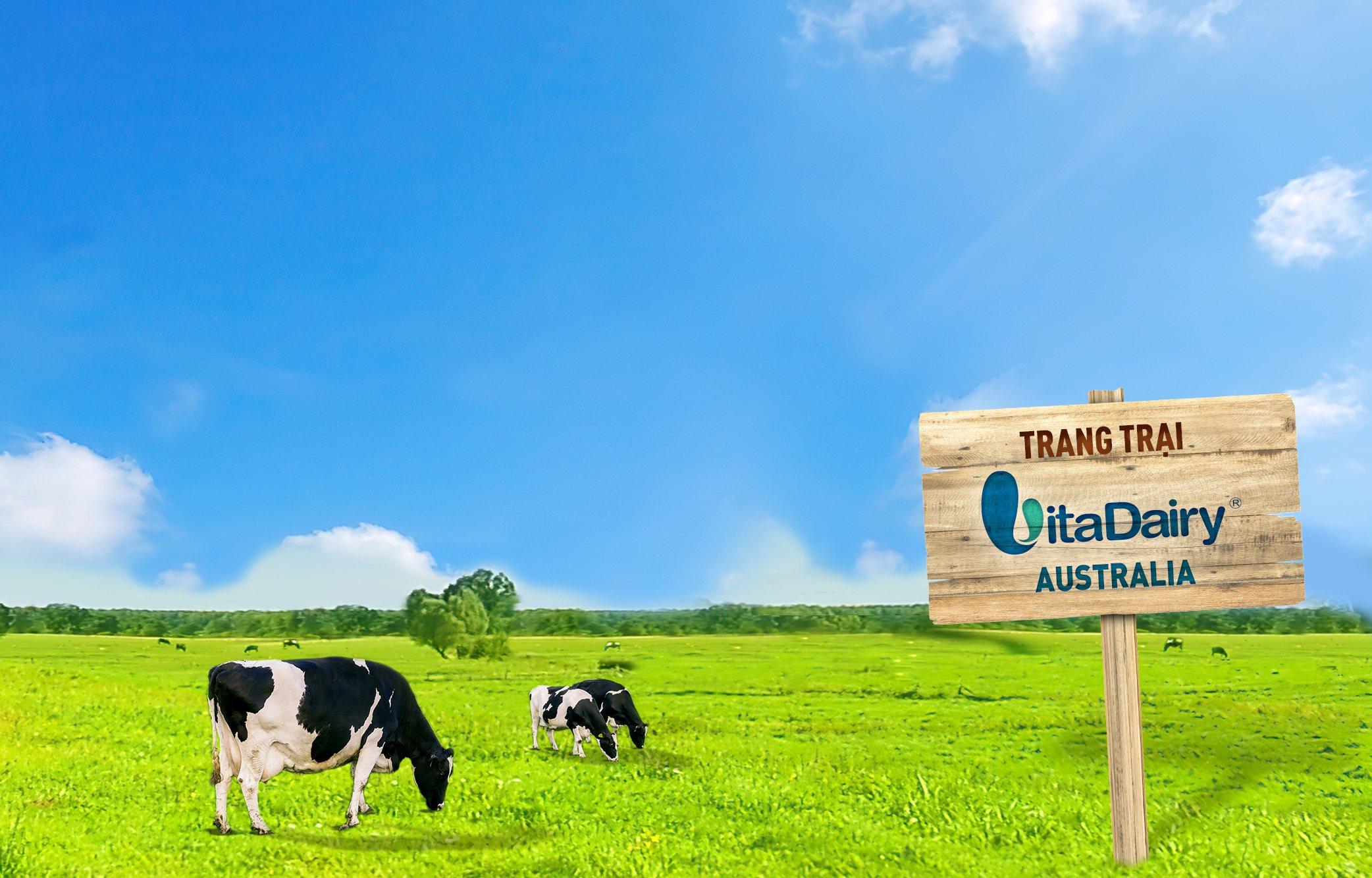 VitaDairy chọn đảo Tasmania của châu Úc vì đây là vùng đất trong lành nhất thế giới (theo nhóm nghiên cứu từ Đại học Colorado). Ảnh: VitaDairy