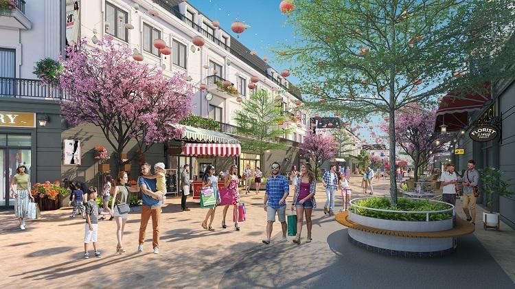 Phối cảnh những dãy Nhà phố Thương mại tại EcoCity Premia.