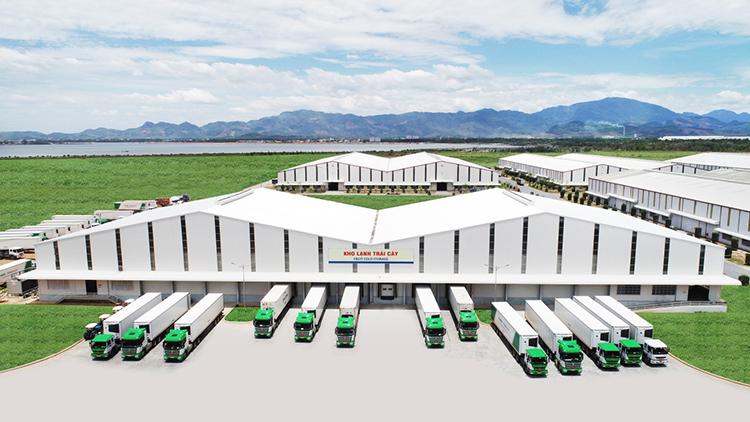 Hệ thống kho lạnh trái cây của Thilogi đặt tại cảng Chu Lai..