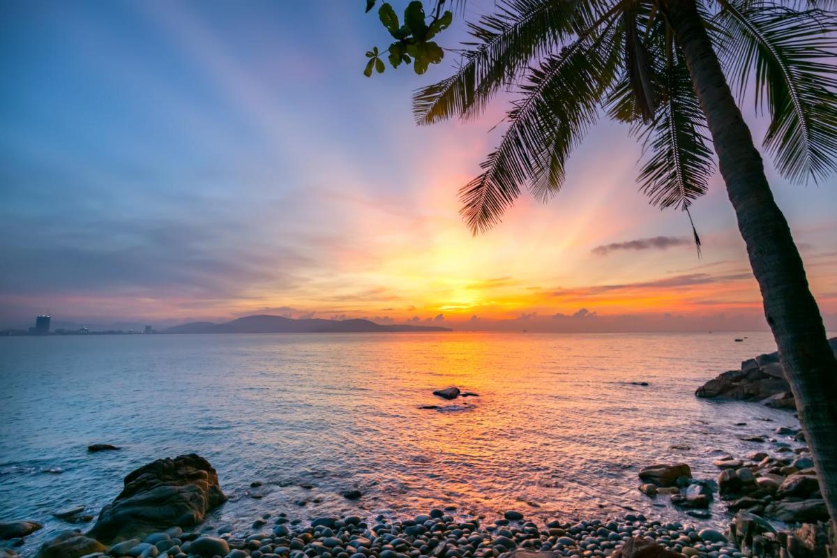 Đầu năm 2020, kênh truyền hình National Geographic (Mỹ) bình chọn Ghềnh Ráng - Quy Nhơn là 1 trong 5 bãi biển đẹp nhất ở phía Nam của Việt Nam. Ảnh: Shutter Stock.