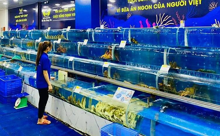 Cửa hàng hải sản trên đường Trần Hưng Đạo (quận 1) vắng khách. Ảnh: Linh Đan.