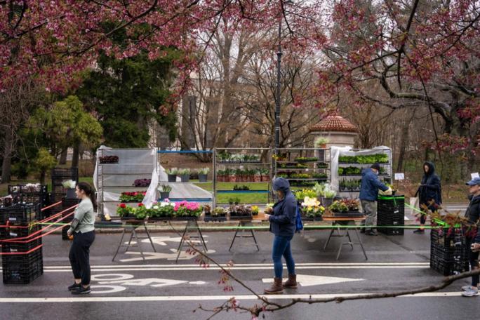 Người dân xếp hàng đi chợ ngoài trời ở quảng trường Grand Army, New York. Ảnh: NYT.