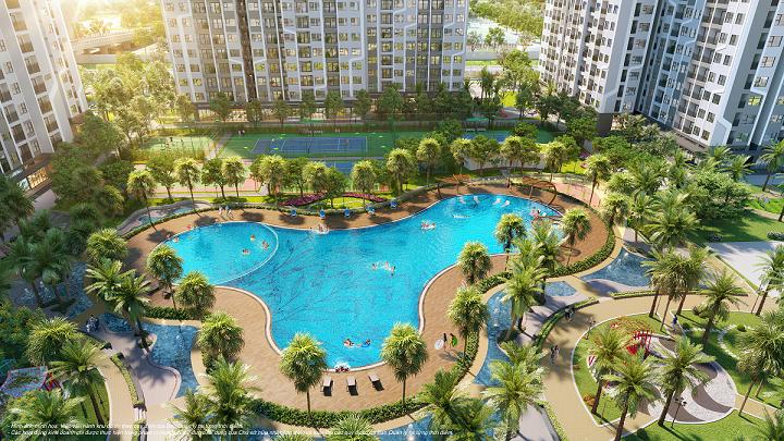Bể bơi ngoài trời rộng hơn 1.000m2 với những hàng cọ Mỹ, chà là rủ bóng mát ngay trong nội khu The Miami. Ảnh: The Miami