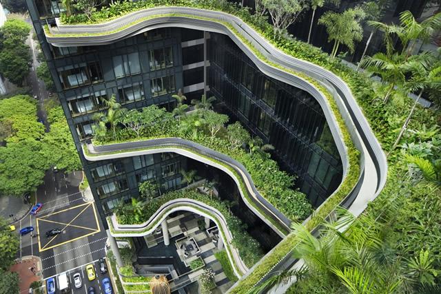 Sức khỏe và môi trường sống được chú trọng tại các dự án căn hộ chung cư cao cấp. Ảnh: Bring Fido.