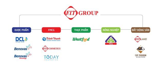 FIT Group sở hữu những công ty có tiềm năng tăng trưởng cao trong các ngành hàng phát triển