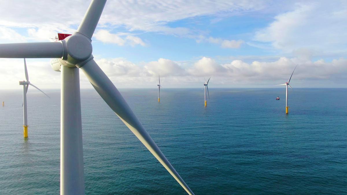 Hợp tác với tập đoàn năng lượng bền vững hàng đầu thế giới, T&T Group muốn đẩy mạnh phát triển điện gió ngoài khơi tại Việt Nam trong thời gian tới. Ảnh: T&T Group