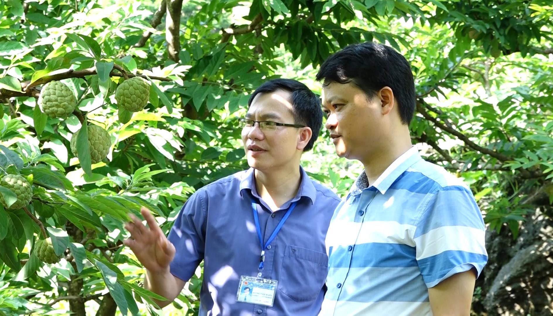 Anh Lương Thành Chung - Trưởng phòng Nông nghiệp và Phát triển Nông thôn huyện Chi Lăng (anh bên tay phải)