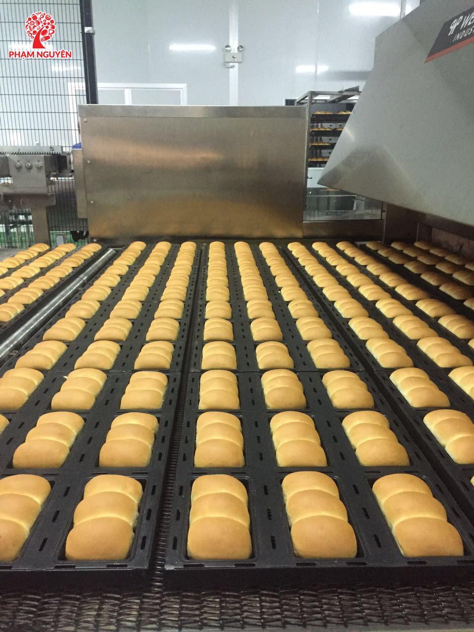 Dây chuyền sản xuất bánh mì được nhập trực tiếp từ châu Âu