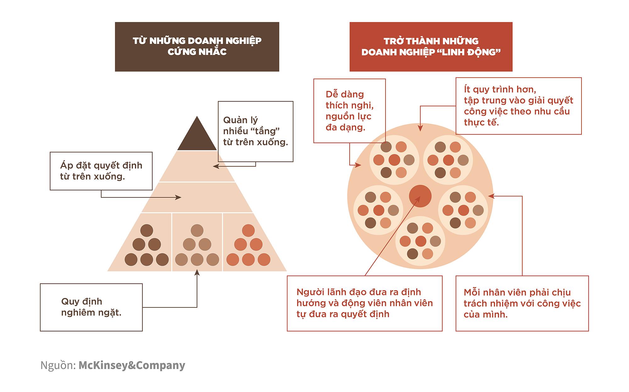 Phân biệt mô hình quản trị hình tròn với mô hình tam giác truyền thống. Nguồn: McKinsey&Company